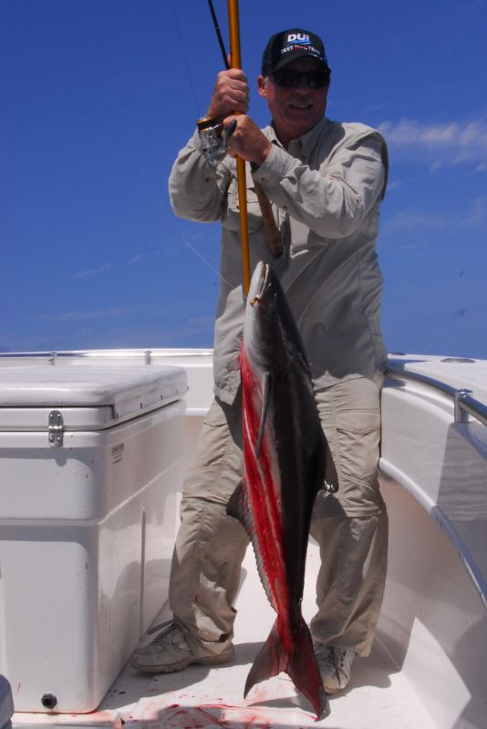 Cobia charters on a Stuart Flirida fishing trip