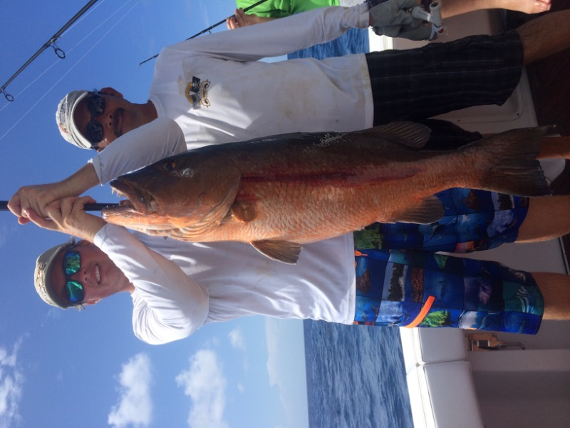 Another nice Cubera snapper fishing at West End.
