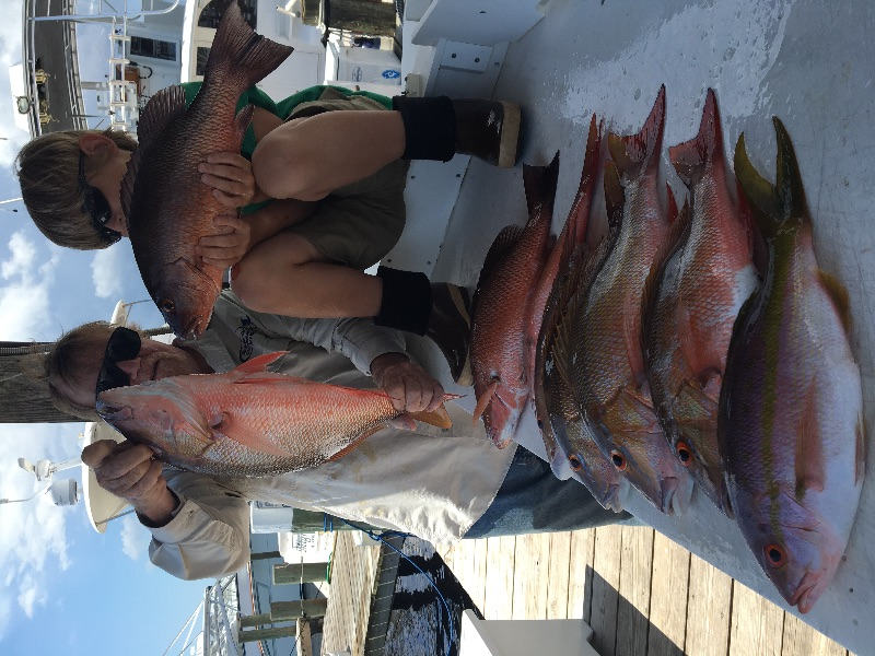 Great mutton snapper fishing during May bottom fishing charters out of Stuart Fl. It's also a great time to catch dolphin and Sailfish here too